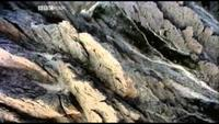 Europe - A Natural History Watch Online