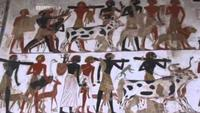 Nubia - Lost Kingdom of Africa