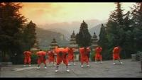 Shaolin Kung Fu Masters