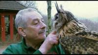 Return of the Eagle Owl