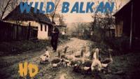Wild Balkans - Divlji Balkan