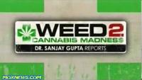 WEED 2 - Cannabis Madness