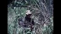 Secrets of Vietnam: The Long Range Recon Patrol
