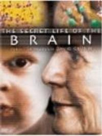 The Secret Life of the Brain Watch Online