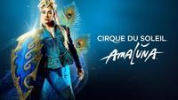 Inside The Cirque Du Soleil