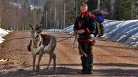 The Last Generation? Sami Reindeer Herders in Swedish Lapland