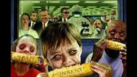 GMO: Ticking Time Bomb