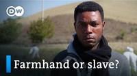 Slavery in Italy