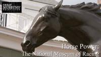 Horse Power - The National Museum of Racing