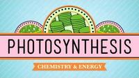 Crash Course - Biology - Photosynthesis
