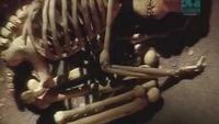Paleoworld - Trail Of The Neanderthal